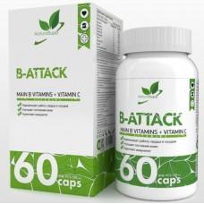 B-ATTACK (Б-Комплекс), 60caps