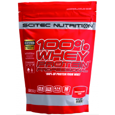 100% Whey Protein Professional, 500g